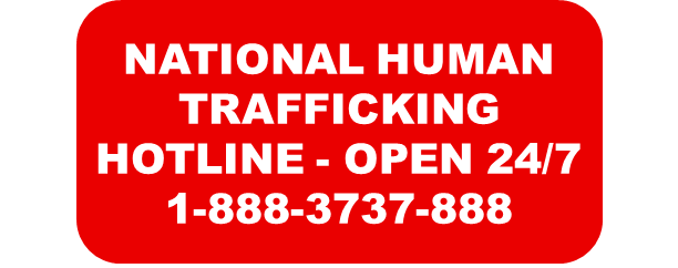 human trafficking hotline